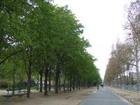 2008_04110049