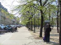 2008_05150207